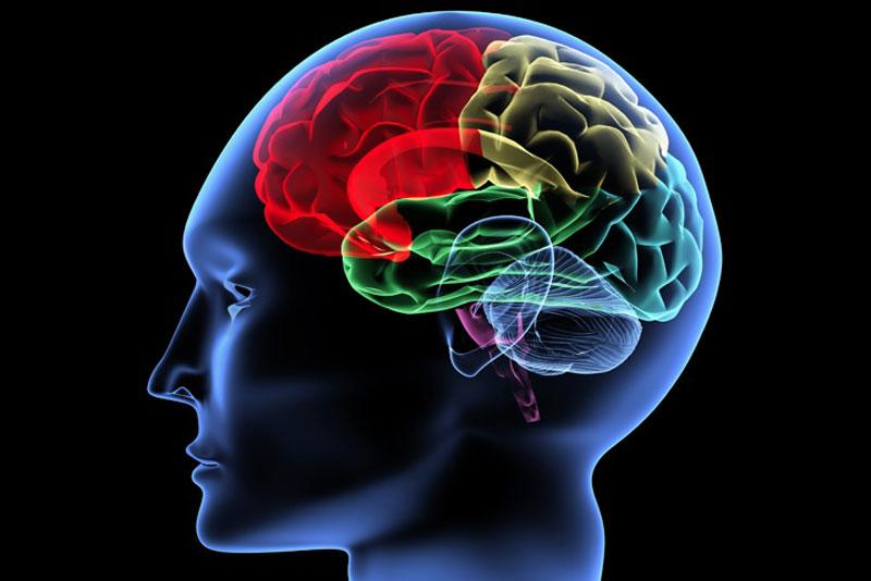 Δωρεάν νευρολογική εξέταση για Σκλήρυνση κατά Πλάκας!