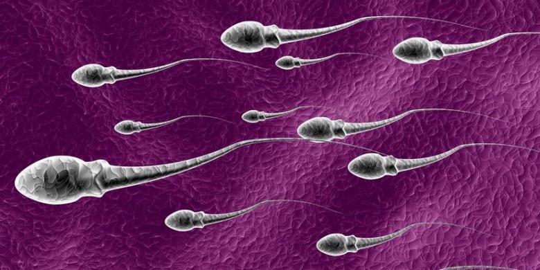 Καλλιέργεια σπέρματος: Σε ποιες περιπτώσεις γίνεται, πώς θα προετοιμαστείτε για την εξέταση