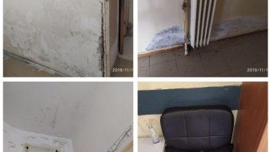 Photo of ΠΟΕΔΗΝ: Κόλαση στο Δρομοκαΐτειο! Πέφτουν σοβάδες, κοριοί παντού, ασθενείς εγκαταλειμμένοι